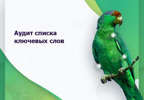 audit-spiska-klyuchevyx-slov